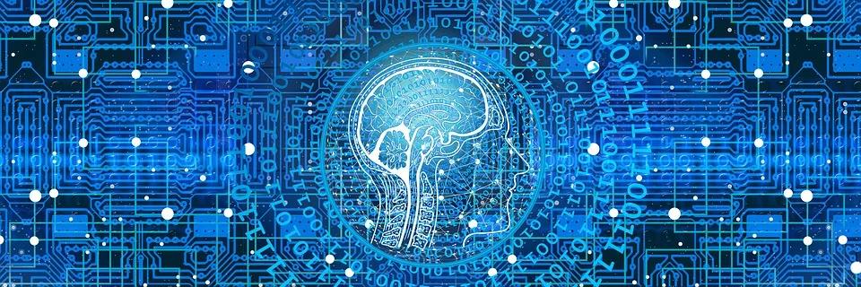 La kinésiologie affecte le cerveau